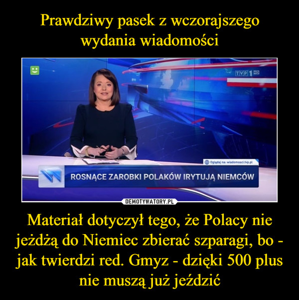 Materiał dotyczył tego, że Polacy nie jeżdżą do Niemiec zbierać szparagi, bo - jak twierdzi red. Gmyz - dzięki 500 plus nie muszą już jeździć –