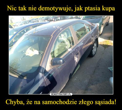 Nic tak nie demotywuje, jak ptasia kupa Chyba, że na samochodzie złego sąsiada!