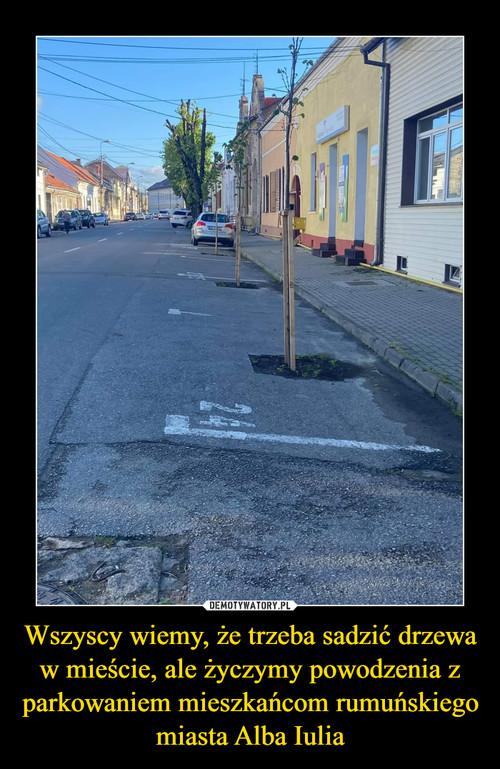 Wszyscy wiemy, że trzeba sadzić drzewa w mieście, ale życzymy powodzenia z parkowaniem mieszkańcom rumuńskiego miasta Alba Iulia
