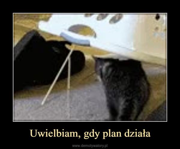 Uwielbiam, gdy plan działa –