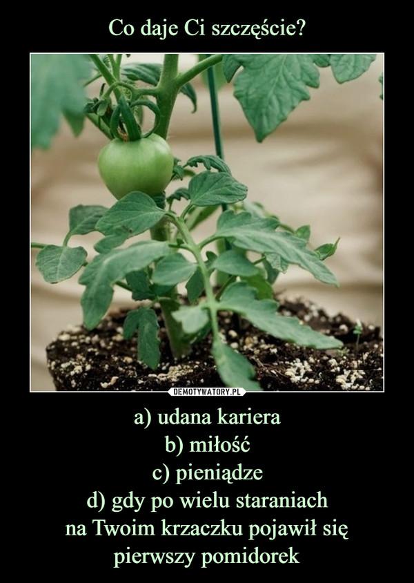 a) udana karierab) miłośćc) pieniądzed) gdy po wielu staraniachna Twoim krzaczku pojawił siępierwszy pomidorek –