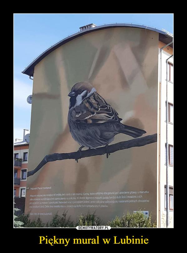 Piękny mural w Lubinie –