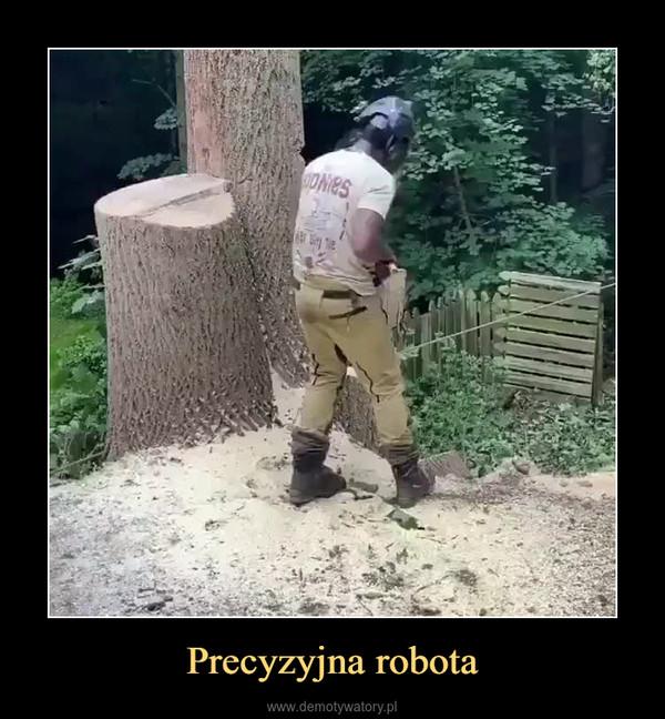 Precyzyjna robota –