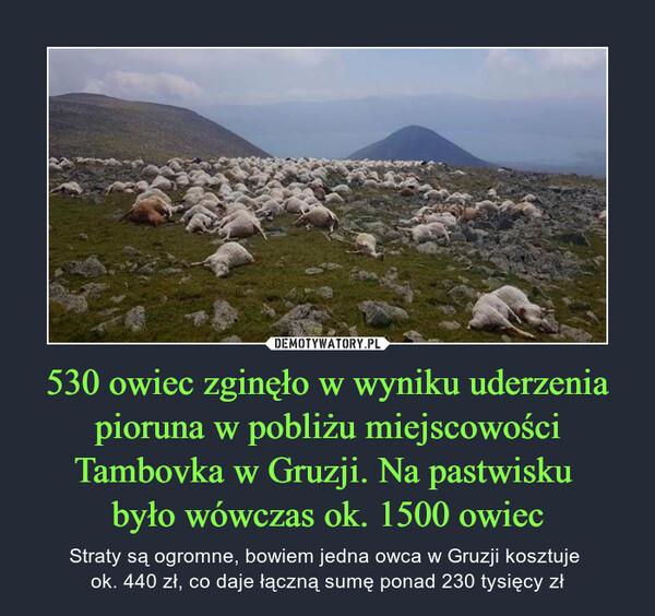 530 owiec zginęło w wyniku uderzenia pioruna w pobliżu miejscowości Tambovka w Gruzji. Na pastwisku było wówczas ok. 1500 owiec – Straty są ogromne, bowiem jedna owca w Gruzji kosztuje ok. 440 zł, co daje łączną sumę ponad 230 tysięcy zł