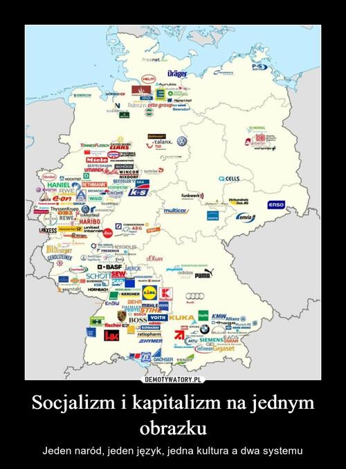 Socjalizm i kapitalizm na jednym obrazku