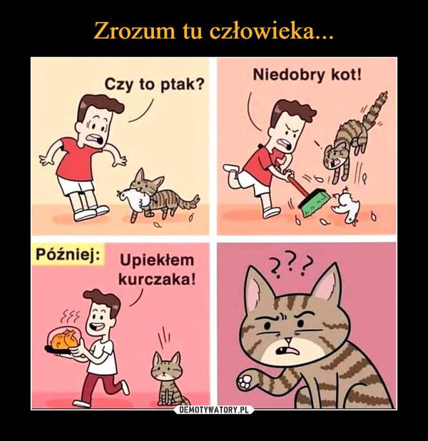 –  Później: Upiekłem kurczaka! Niedobry kot!