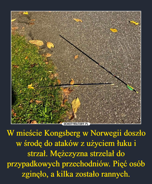 W mieście Kongsberg w Norwegii doszło w środę do ataków z użyciem łuku i strzał. Mężczyzna strzelał do przypadkowych przechodniów. Pięć osób zginęło, a kilka zostało rannych.