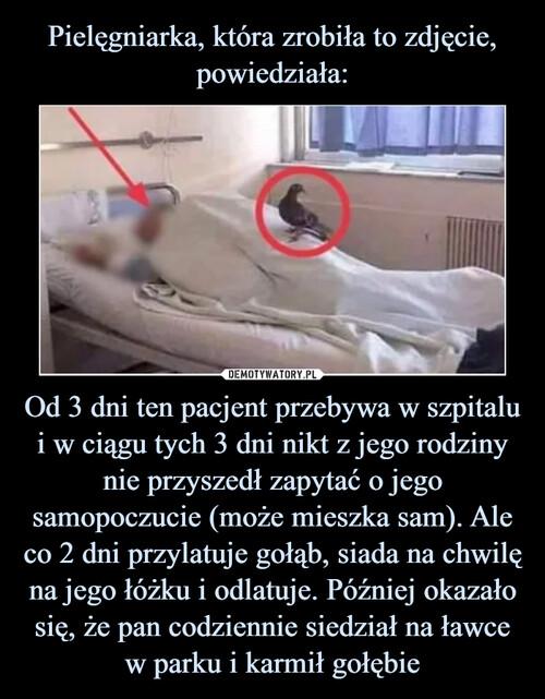 Pielęgniarka, która zrobiła to zdjęcie, powiedziała: Od 3 dni ten pacjent przebywa w szpitalu i w ciągu tych 3 dni nikt z jego rodziny nie przyszedł zapytać o jego samopoczucie (może mieszka sam). Ale co 2 dni przylatuje gołąb, siada na chwilę na jego łóżku i odlatuje. Później okazało się, że pan codziennie siedział na ławce w parku i karmił gołębie